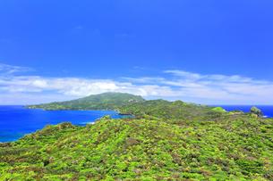 小笠原国立公園 母島の小富士より北方向を望むの写真素材 [FYI04896194]