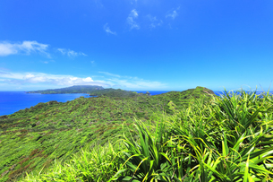 小笠原国立公園 母島の小富士より北方向を望むの写真素材 [FYI04896196]