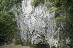 6月 初夏の猊鼻渓(げいびけい) -石灰岩断崖の峡谷美-の写真素材 [FYI04896342]