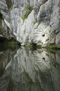 6月 初夏の猊鼻渓(げいびけい) -石灰岩断崖の峡谷美-の写真素材 [FYI04896343]