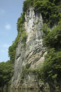 6月 初夏の猊鼻渓(げいびけい) -石灰岩断崖の峡谷美-の写真素材 [FYI04896347]