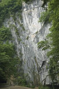 6月 初夏の猊鼻渓(げいびけい) -石灰岩断崖の峡谷美-の写真素材 [FYI04896348]