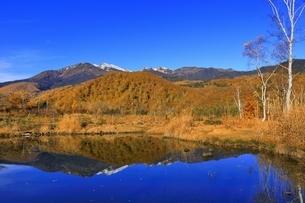 乗鞍高原の紅葉とまいめの池の写真素材 [FYI04896381]