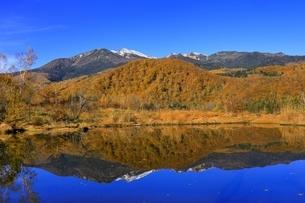 乗鞍高原の紅葉とまいめの池の写真素材 [FYI04896385]