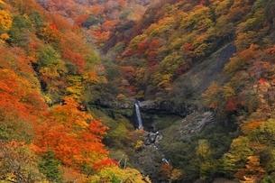 日光いろは坂の紅葉と般若の滝の写真素材 [FYI04896395]