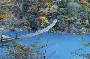 秋の寸又峡と夢の吊橋 静岡県の写真素材 [FYI04896532]