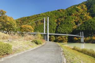 大井川にかかる接岨大吊橋 静岡県の写真素材 [FYI04896536]