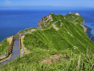 神威岬の写真素材 [FYI04896582]
