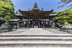 伊豆修善寺の観光名所 修禅寺本堂と青い空の写真素材 [FYI04896638]