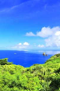 小笠原国立公園 母島のサンセットシアターより望む紺碧の海の写真素材 [FYI04896945]