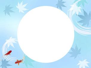 夏 暑中見舞い 金魚 波紋 もみじ メッセージスペース 和風 のイラスト素材 [FYI04897233]