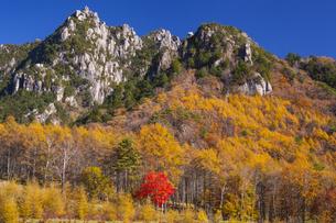 紅葉のみずがき山の写真素材 [FYI04897349]