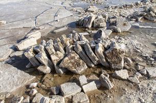 エチオピア・カルム塩湖で採掘された岩塩ブロックの写真素材 [FYI04898087]