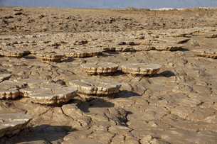 奇岩ソルトマッシュルームが並ぶダナキル砂漠ダロールの景色の写真素材 [FYI04898090]