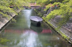 夏の大垣市水門川の写真素材 [FYI04898107]