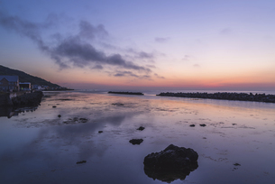 夜明けの礼文島の写真素材 [FYI04898118]