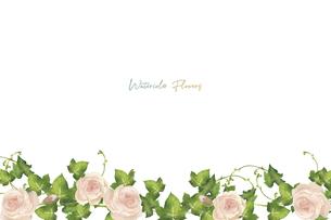 水彩の薔薇とアイビーのフレームのイラスト素材 [FYI04898127]