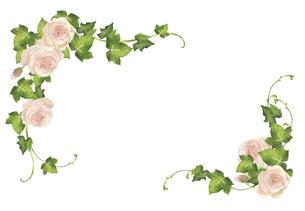 水彩の薔薇とアイビーのフレームのイラスト素材 [FYI04898128]