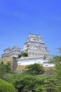 姫路城天守群の写真素材 [FYI04898338]