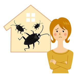 ゴキブリに困る女性のイラスト素材 [FYI04898534]