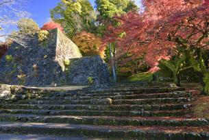 秋の人吉城跡の写真素材 [FYI04898872]