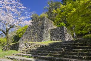 桜の人吉城跡の写真素材 [FYI04898885]
