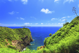 小笠原国立公園 母島のハスベイと向島の写真素材 [FYI04898998]