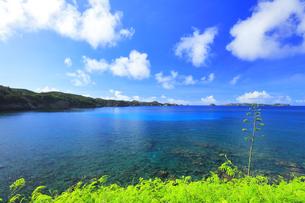 小笠原国立公園 母島の御幸之浜の写真素材 [FYI04899006]