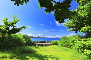 小笠原国立公園 母島の御幸之浜展望台の写真素材 [FYI04899011]