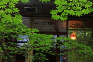 イタリア大使館別荘記念公園 中禅寺湖の写真素材 [FYI04899539]