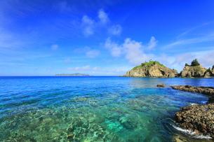 小笠原国立公園 母島の蓬莱根海岸の写真素材 [FYI04899656]