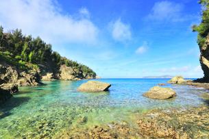 小笠原国立公園 母島の蓬莱根海岸の写真素材 [FYI04899657]