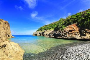 小笠原国立公園 母島の万年青浜の写真素材 [FYI04899661]