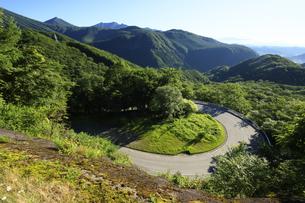 いろは坂 日本の道百選のイロハ坂の写真素材 [FYI04899912]