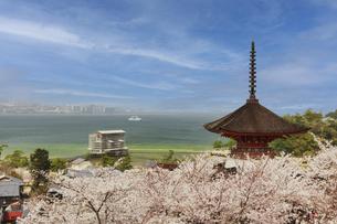 春の宮島、厳島神社(広島県)の写真素材 [FYI04899940]