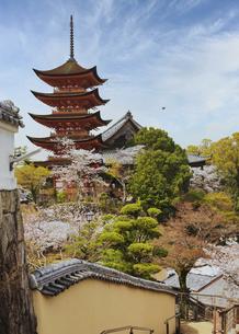 春の宮島、厳島神社(広島県)の写真素材 [FYI04899942]