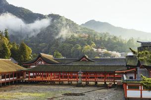 夕霧がかかる春の厳島神社、鏡の池の写真素材 [FYI04899960]