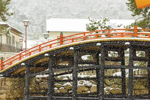 雪化粧した厳島神社、大鳥居の写真素材 [FYI04900039]