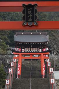 正月の長崎八坂神社参道の写真素材 [FYI04900608]