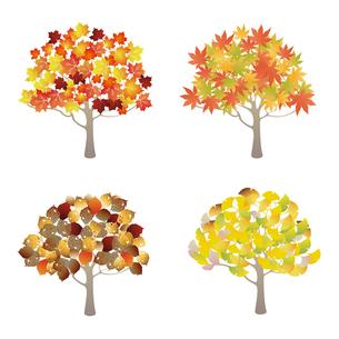 紅葉の樹木イラストセットのイラスト素材 [FYI04900690]