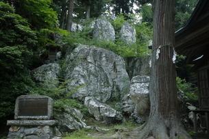 【地学教材】天然記念物のペグマタイト岩脈の写真素材 [FYI04901070]