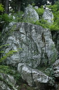 【地学教材】天然記念物のペグマタイト岩脈の写真素材 [FYI04901071]