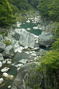 【地学教材】三波石峡 -三波川変成岩の模式地-の写真素材 [FYI04901075]