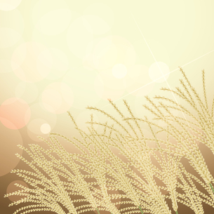 ススキの風景イラストのイラスト素材 [FYI04901131]