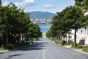函館 八幡坂の写真素材 [FYI04901167]