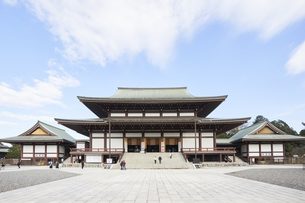 成田山大本堂の写真素材 [FYI04901393]