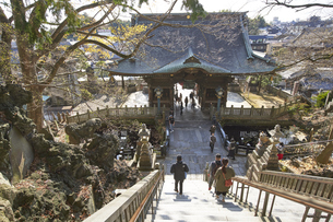 成田山、本堂を背景に仁王門に向かうの写真素材 [FYI04901429]
