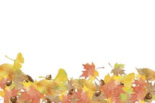 秋のデコレーション 水彩イラストのイラスト素材 [FYI04901649]