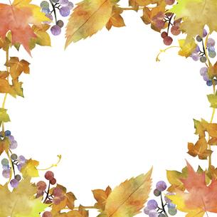 秋のフレーム 水彩イラストのイラスト素材 [FYI04901650]