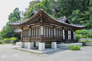 神奈川県立三ツ池公園のコリア庭園の写真素材 [FYI04901704]
